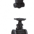 FORGE WELDING GLOBE VALVE - SCREW, SOCKET, FLANGED