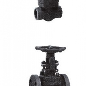 FORGE WELDING GATE VALVE - SCREW, SOCKET, FLANGED